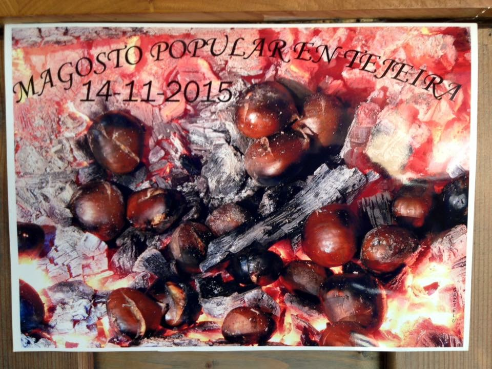 14 de noviembre, Magosto en Tejeira 1