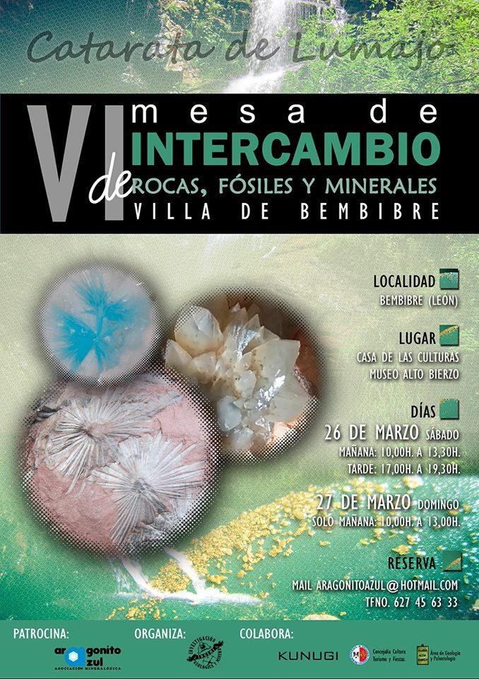 VI Mesa de intercambio de Rocas, fósiles y minerales 1