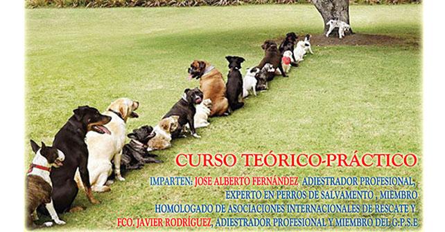 Camponaraya organiza un curso de educación cívica para dueños de perros 1