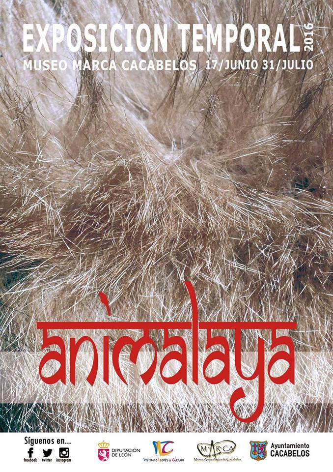 Esposición ANIMALAYA 1