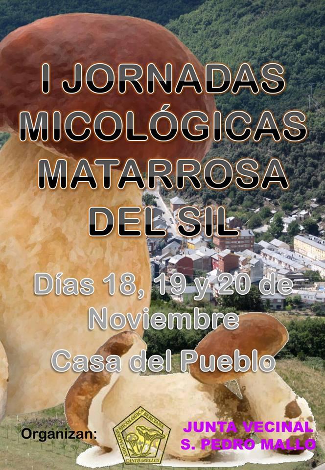 San Pedro Mayo organiza las I Jornadas micológicas para el mes de noviembre 1