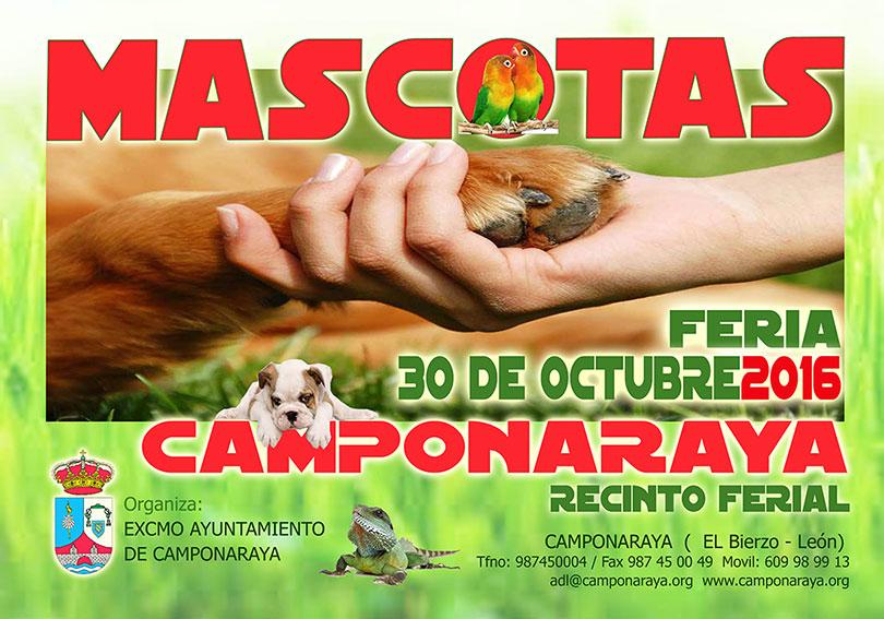 Vuelve la Feria de la mascota a Camponaraya el 30 de octubre 1
