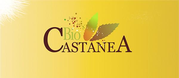 Biocastanea 2018 regresa con jornadas técnicas y la feria sectorial de la castaña 1