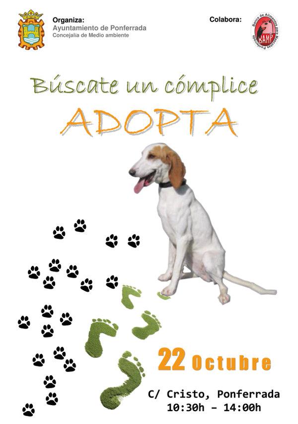 Jornada de adopción canina para el sábado 22 de octubre 1