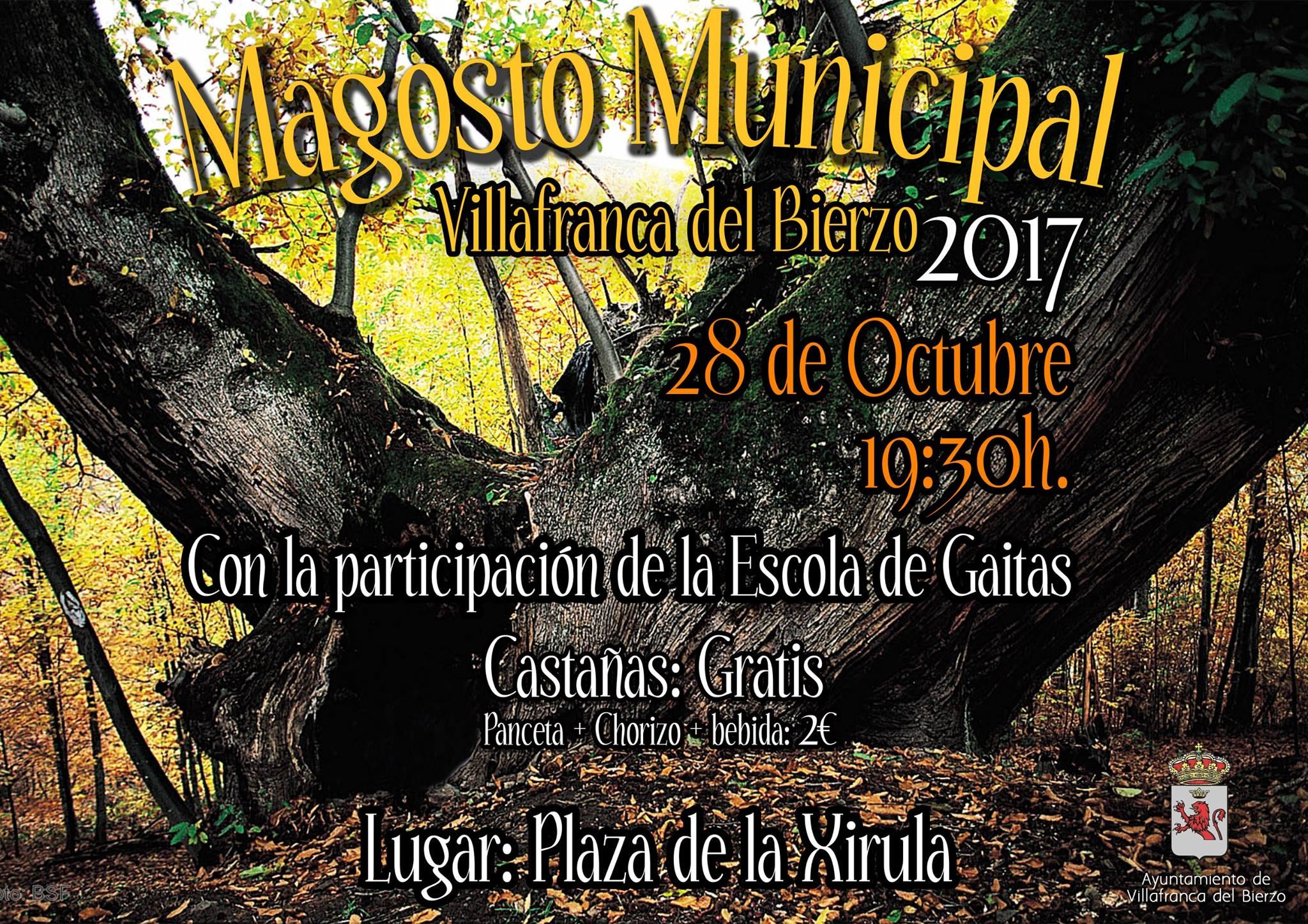 Villafranca organiza su Magosto Municipal 2017 1
