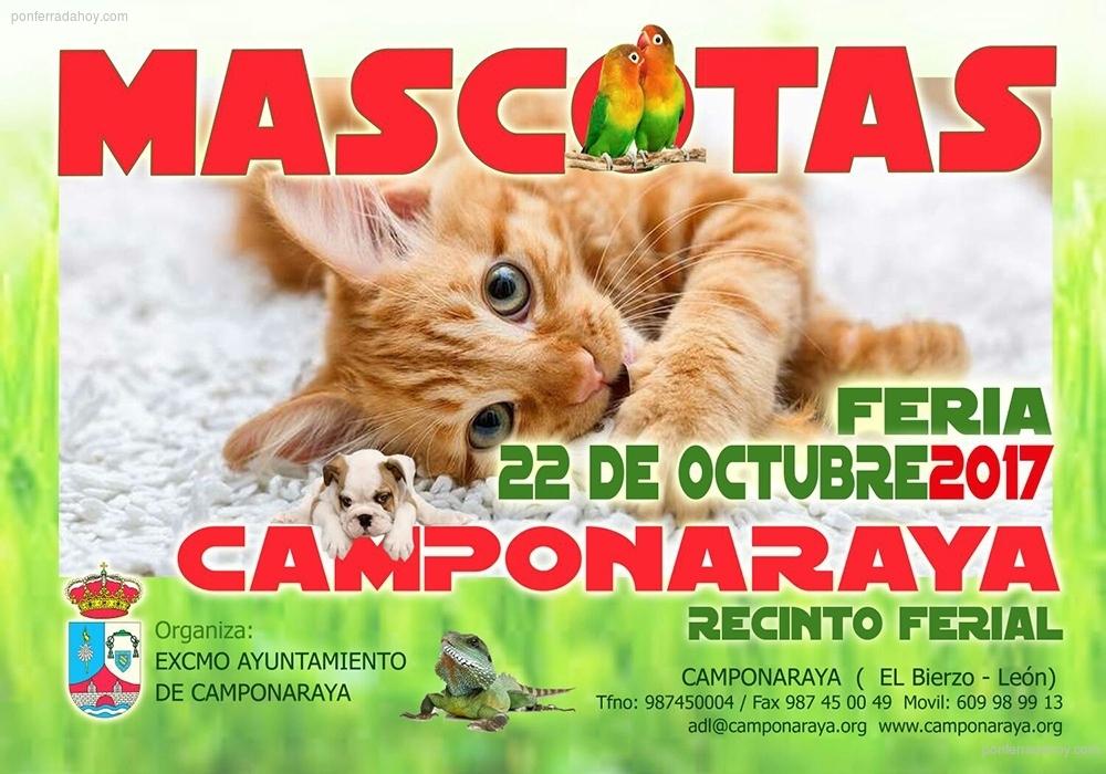 El 22 de octubre las mascotas se encuentran en Camponaraya 1