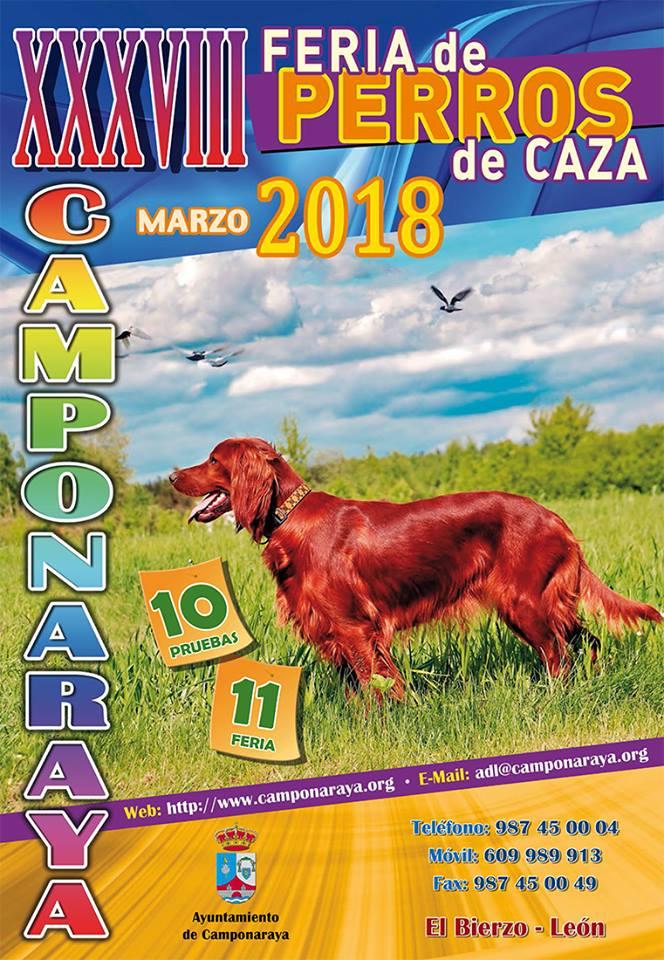 38 Edición de la Feria de Perros de Caza 1