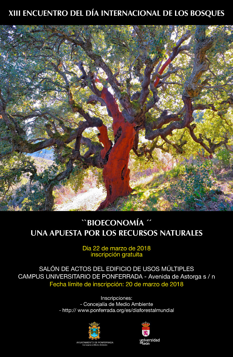 XIII Encuentro del Día Internacional de los Bosques 2018 1