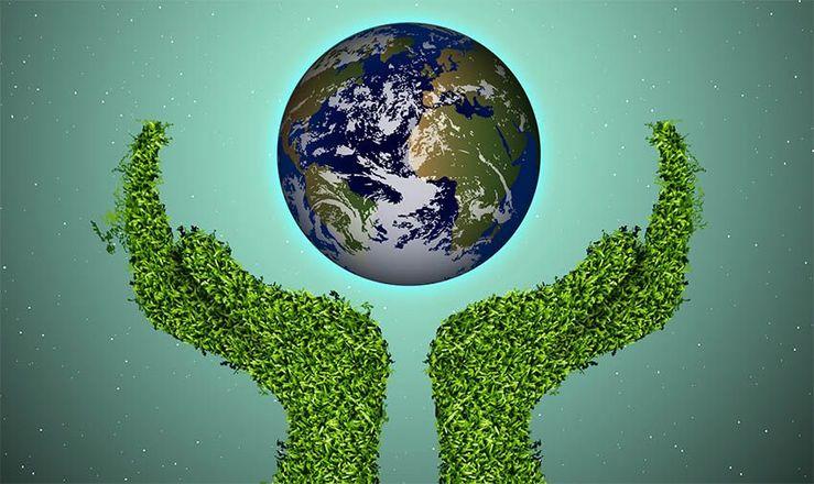 El Banco de Tierras abre el plazo de inscripción en un taller gratuito sobre agricultura ecológica 1