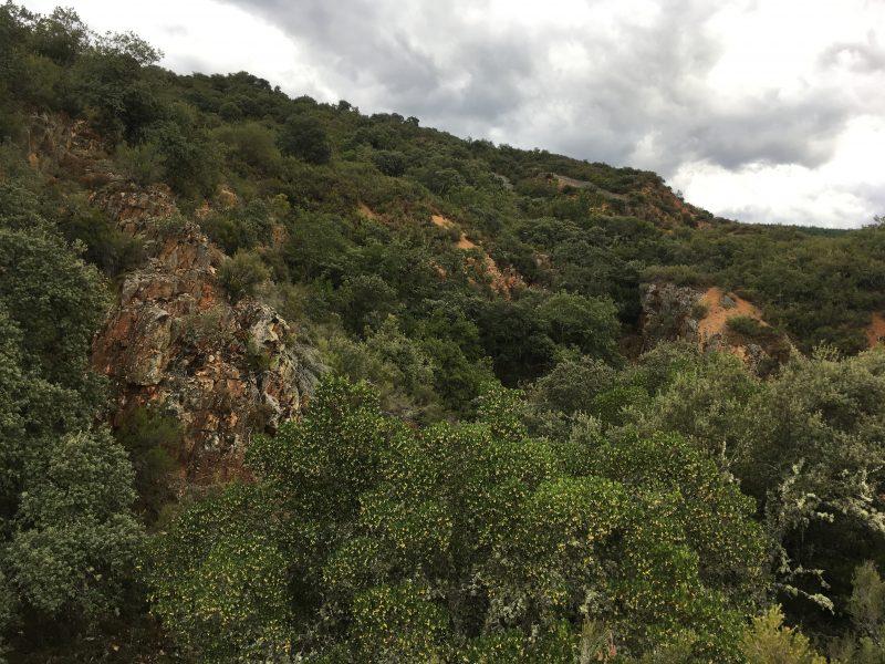 Excursión a las minas romanas de oro de Castropodame 17