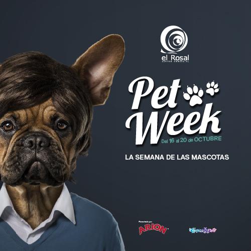 El Rosal organiza la Pet Week, con actividades y sorpresas para las mascotas 1
