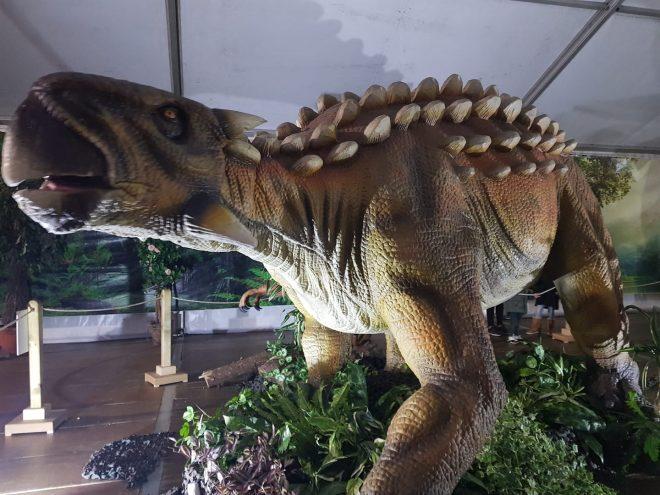 llega a Ponferrada 'Dinosauria Experience', exposición de dinosaurios animatrónicos 1