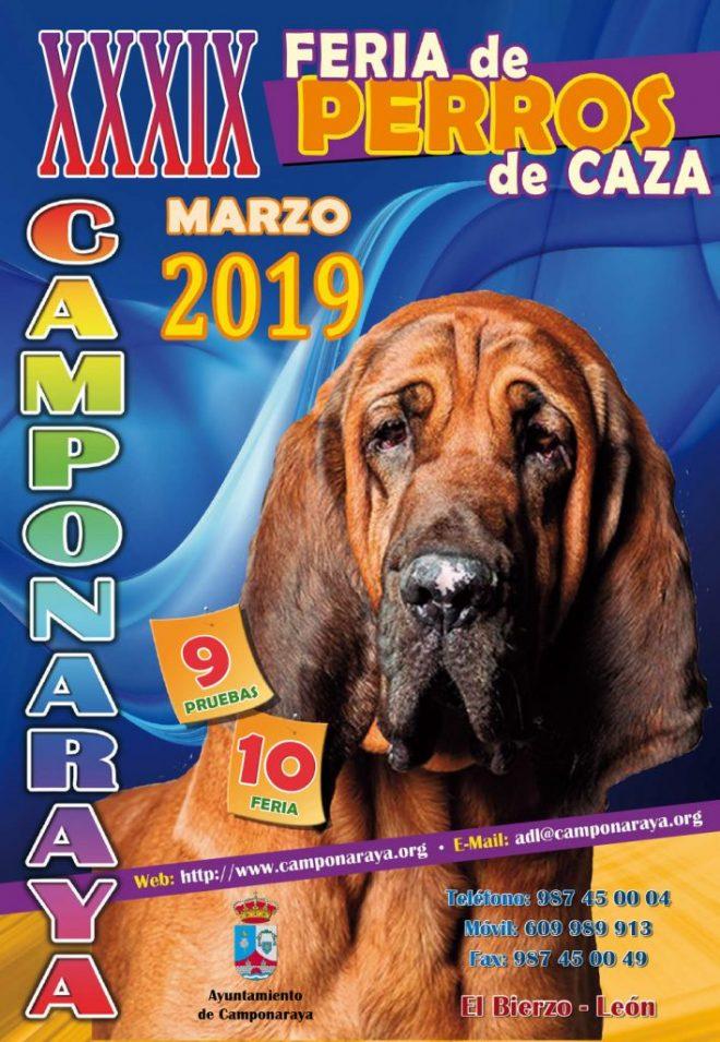 XXXIX Feria de Perros de Caza de Camponaraya 1