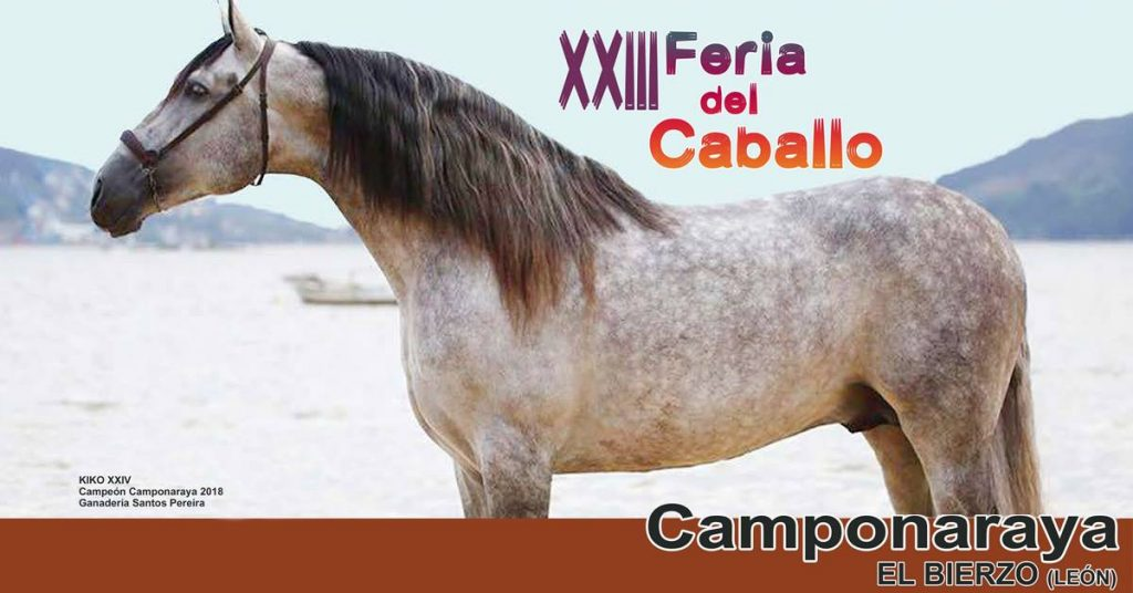 Camponaraya celebra la XXIII Feria del Caballo del 10 al 12 de mayo 1