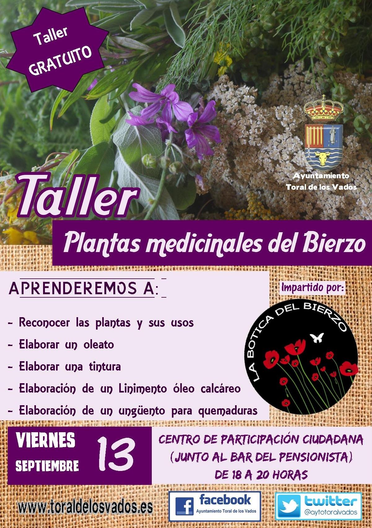 TALLER DE PLANTAS MEDICINALES DEL BIERZO 1