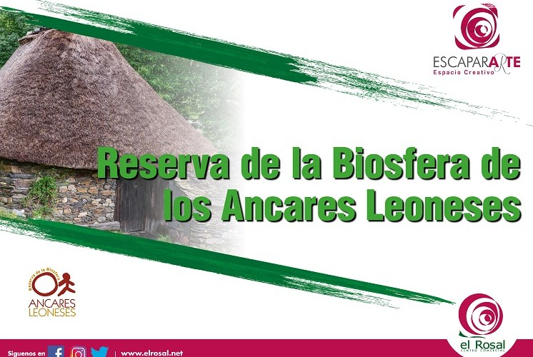 El centro comercial El Rosal muestra en una exposición las mejores imágenes de la Reserva de la Biosfera de los Ancares Bercianos 1