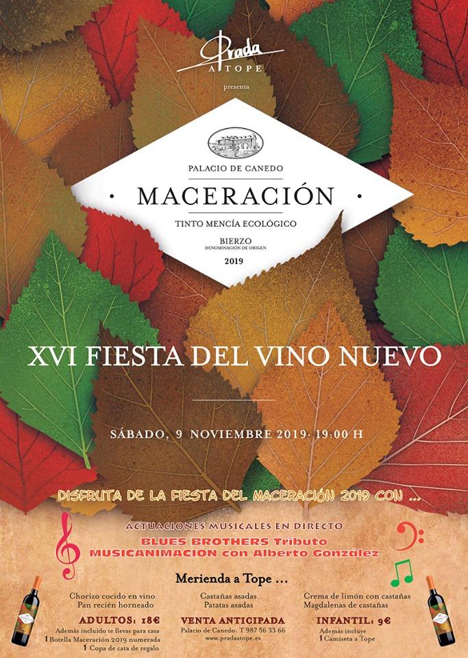 XVI Fiesta del Vino Nuevo en el Palacio de Canedo 1