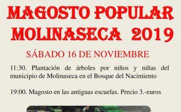 Gran Magosto en Molinaseca. 14 de noviembre 2019 5