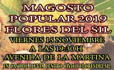 Magosto Popular en Flores del Sil. Viernes 15 de noviembre 2019 4