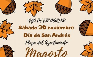 Gran Magosto en Vega de Espinareda para celebrar San Andrés 3