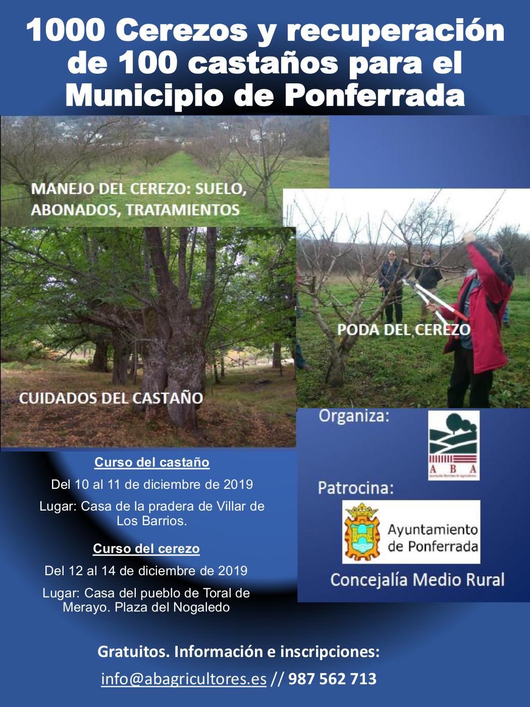 1000 cerezos y recuperación de 100 castaños para el Municipio de Ponferrada 1