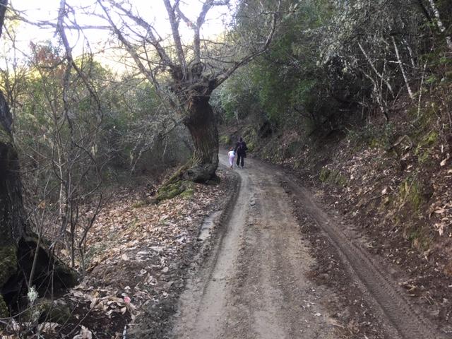 Ruta: Un paseo de Viladepalos a Peón 8