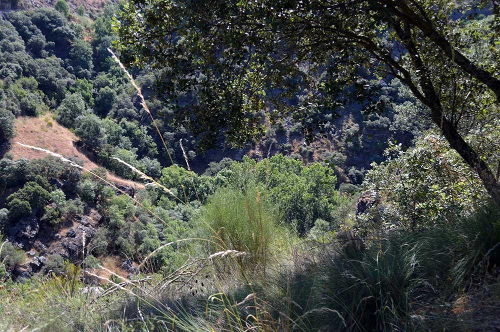 Ruta de Las Puentes de Malpaso en Molinaseca 9