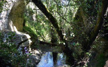 Ruta de Las Puentes de Malpaso en Molinaseca 6