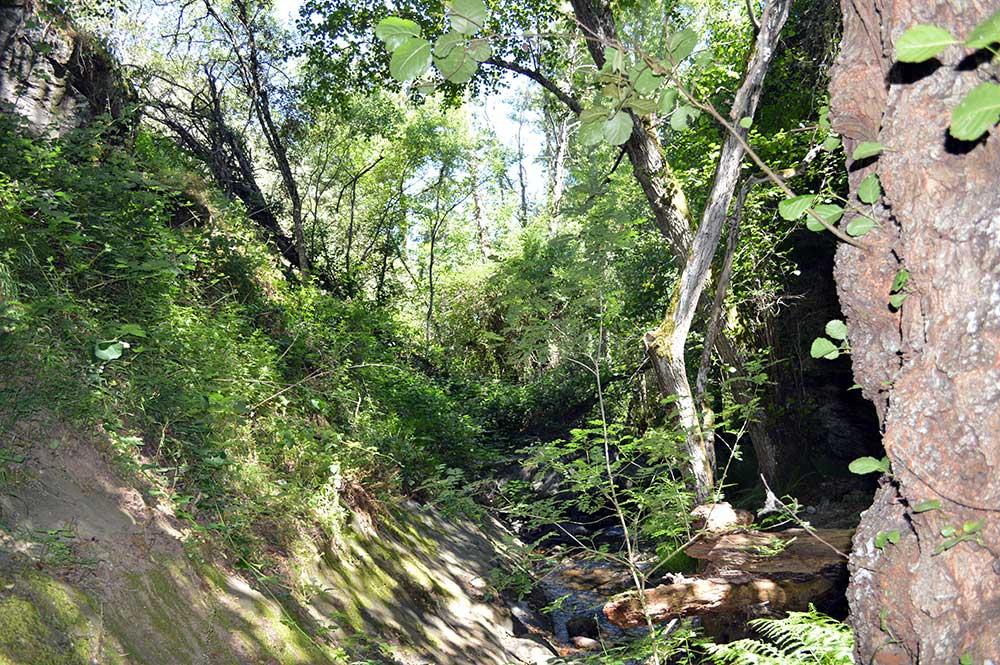 Ruta de Las Puentes de Malpaso en Molinaseca 14