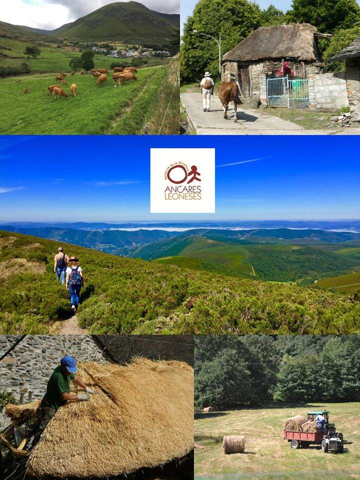 La Reserva de la Biosfera de los Ancares presenta la tercera edición de su concurso de fotografía. 1