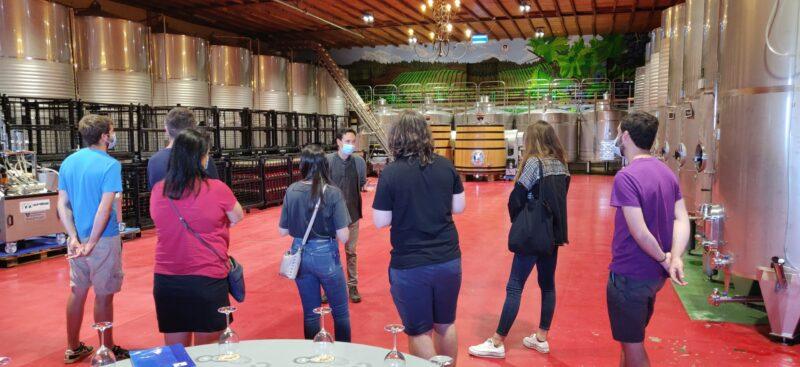 Los Alumnos del 'Master en viticultura, enología y gestión de empresas vitivinícolas' vistan las bodegas del palacio de Canedo 1