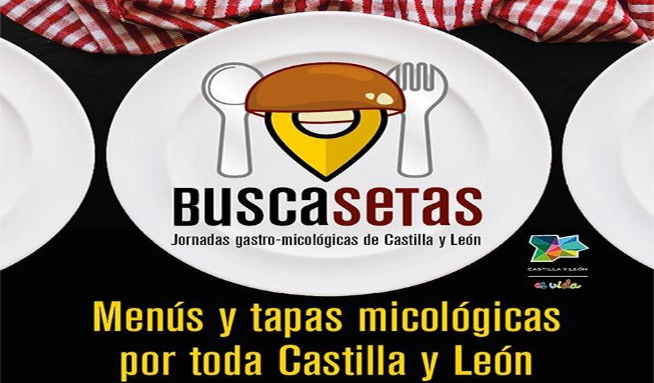 Las jornadas 'Buscasetas Tierra de Sabor' ofertarán simultáneamente menús y tapas con lo mejor de la gastronomía micológica de Castilla y León hasta el 15 de noviembre 1