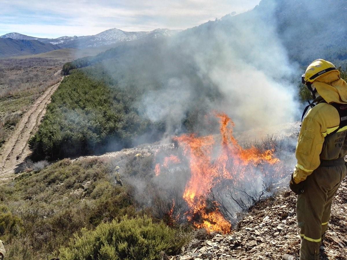 Jornada técnica sobre prevención de incendios forestales en el Campus de Ponferrada 1