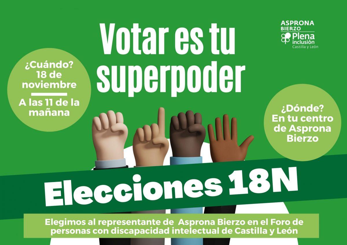 Asprona Bierzo elige este miércoles a su representante en el Foro de Personas con Discapacidad Intelectual de Castilla y León 1