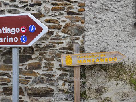 Rutas por el Bierzo: El Castañar de Manzanedo de Valdueza 5