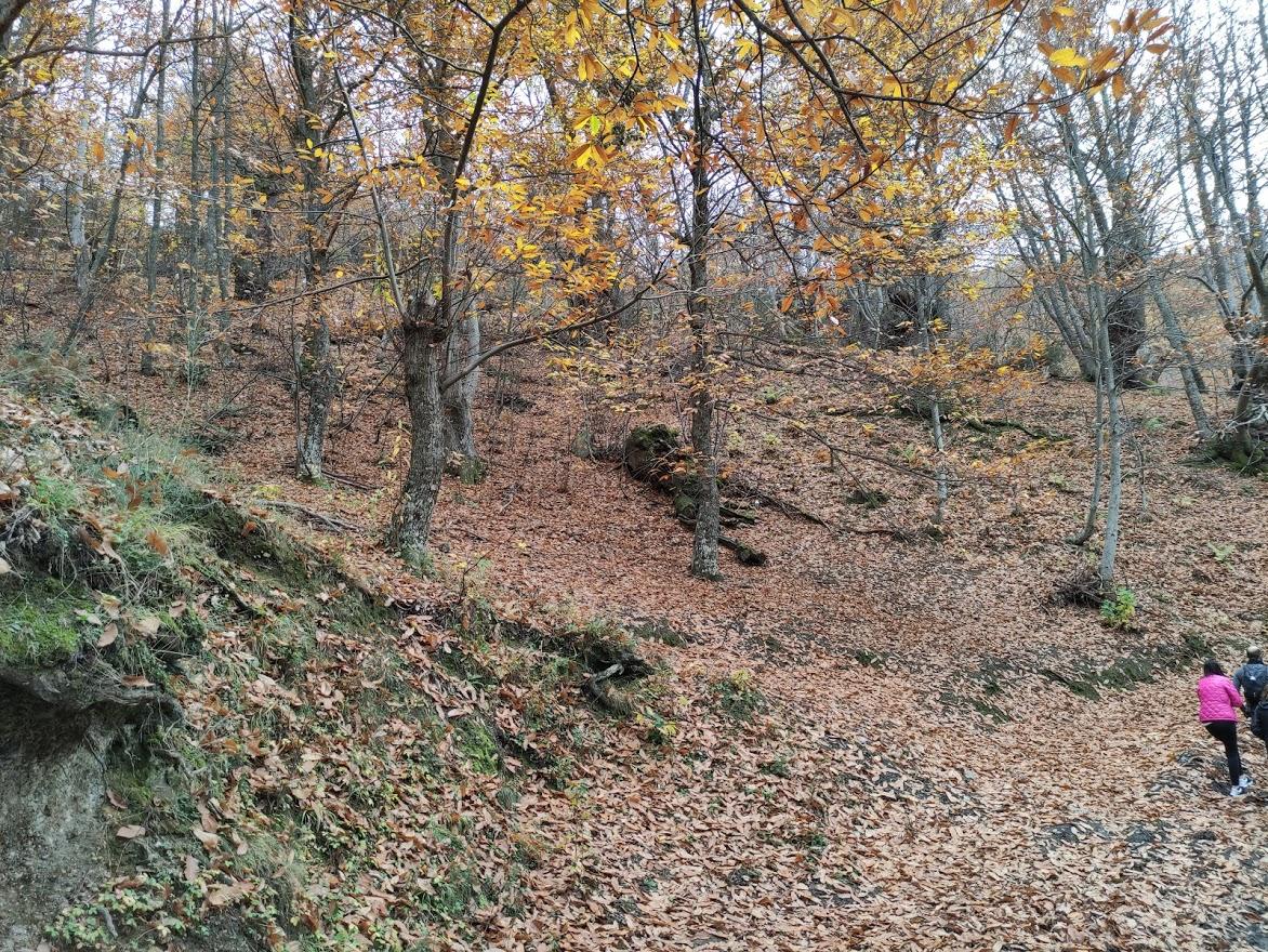 Rutas por el Bierzo: El Castañar de Manzanedo de Valdueza 17