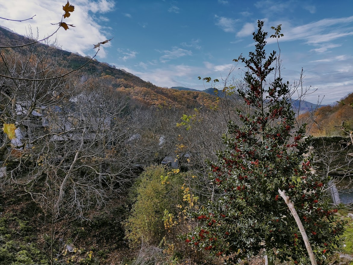 Rutas por el Bierzo: El Castañar de Manzanedo de Valdueza 2