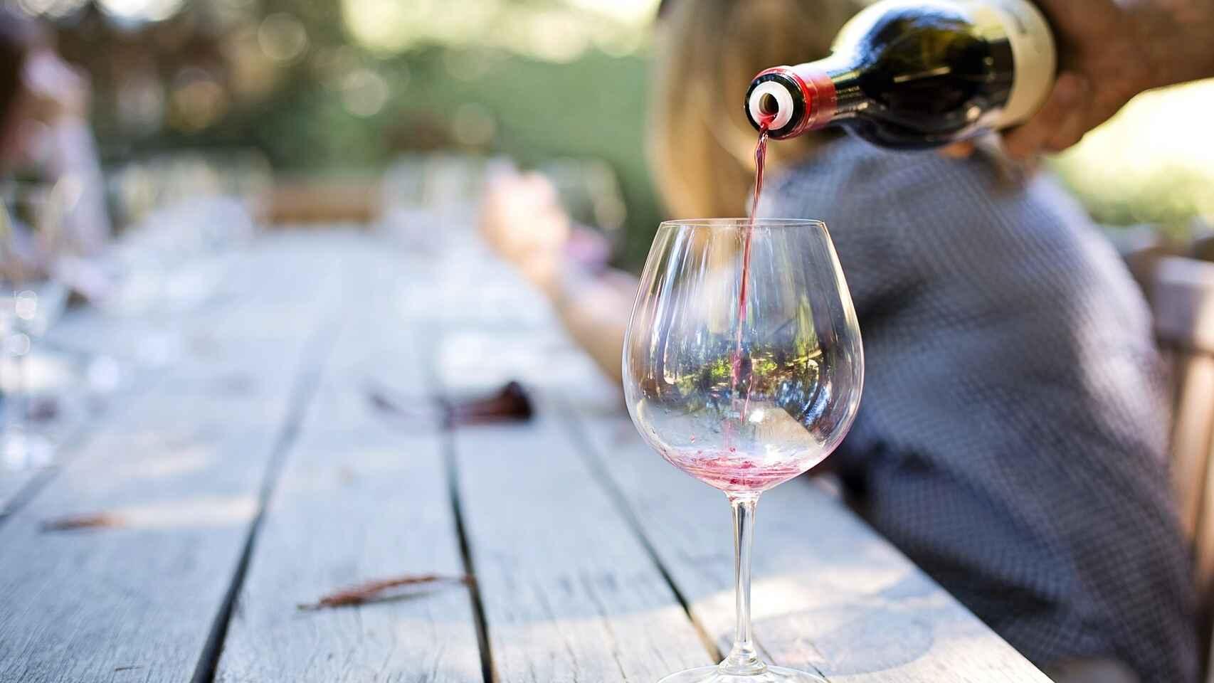 La Consejería de Agricultura, Ganadería y Desarrollo Rural publica las ayudas a reestructuración y reconversión de viñedo para fortalecer al sector en la Comunidad 1