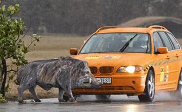 VÍDEO | ¿Qué ocurre cuándo atropellamos un jabalí con nuestro coche? 3