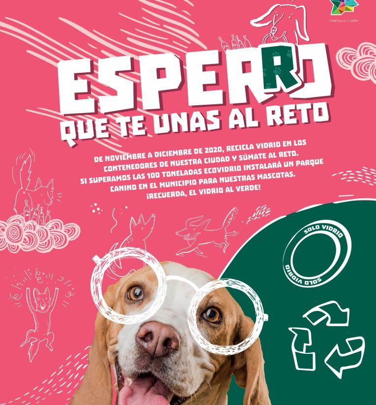 """""""EspeRRo que te unas al reto"""", El reciclaje de vidrio de los ponferradinos en noviembre y diciembre tendrá un fin solidario 1"""