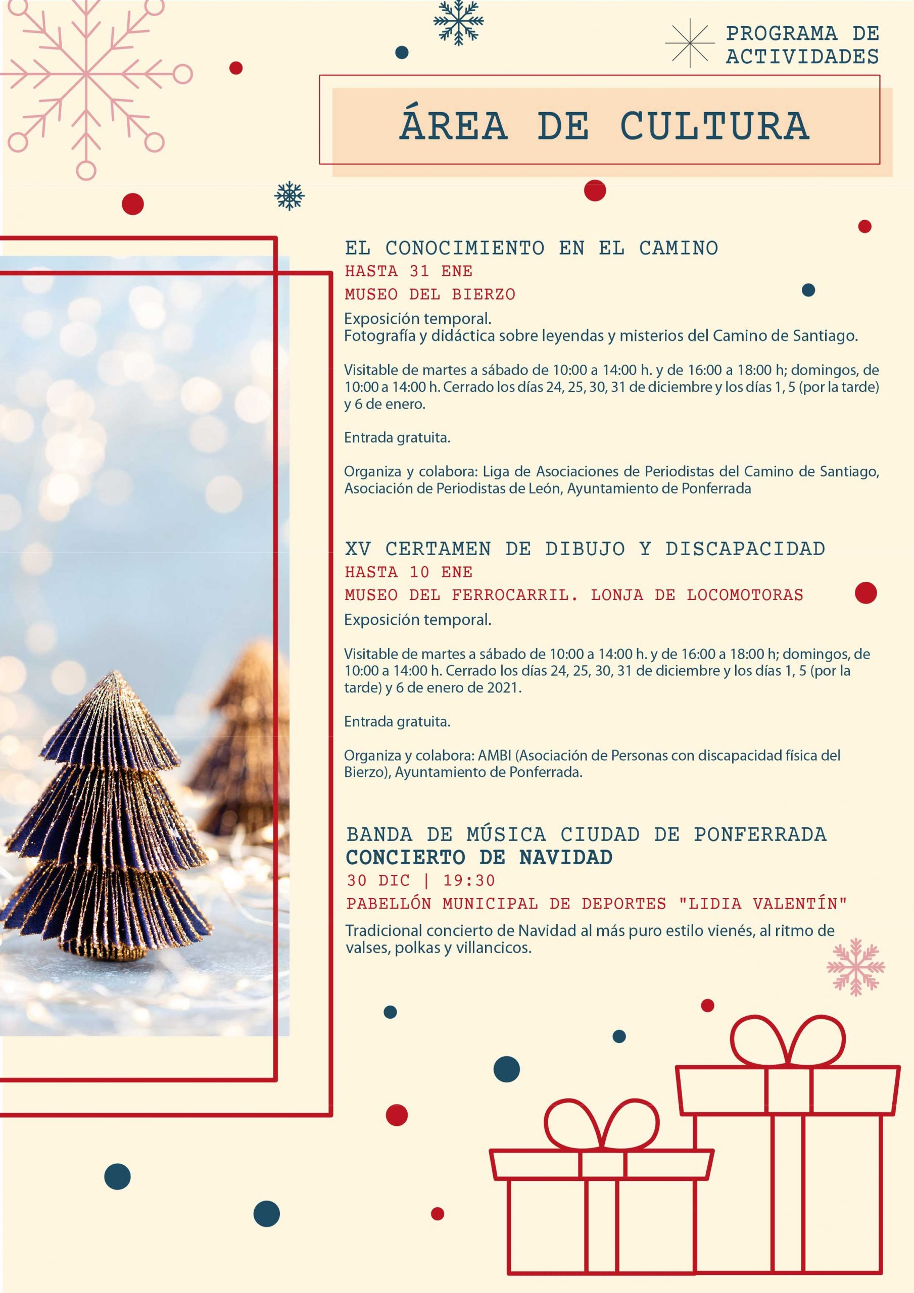 Programa de Navidad 2020 en Ponferrada 9