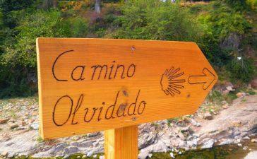 La Comisión de los Caminos a Santiago reconoce el Camino Olvidado y el Camino de Invierno como históricos así como el camino  por Manzanal como nuevo Camino Tradicional 9