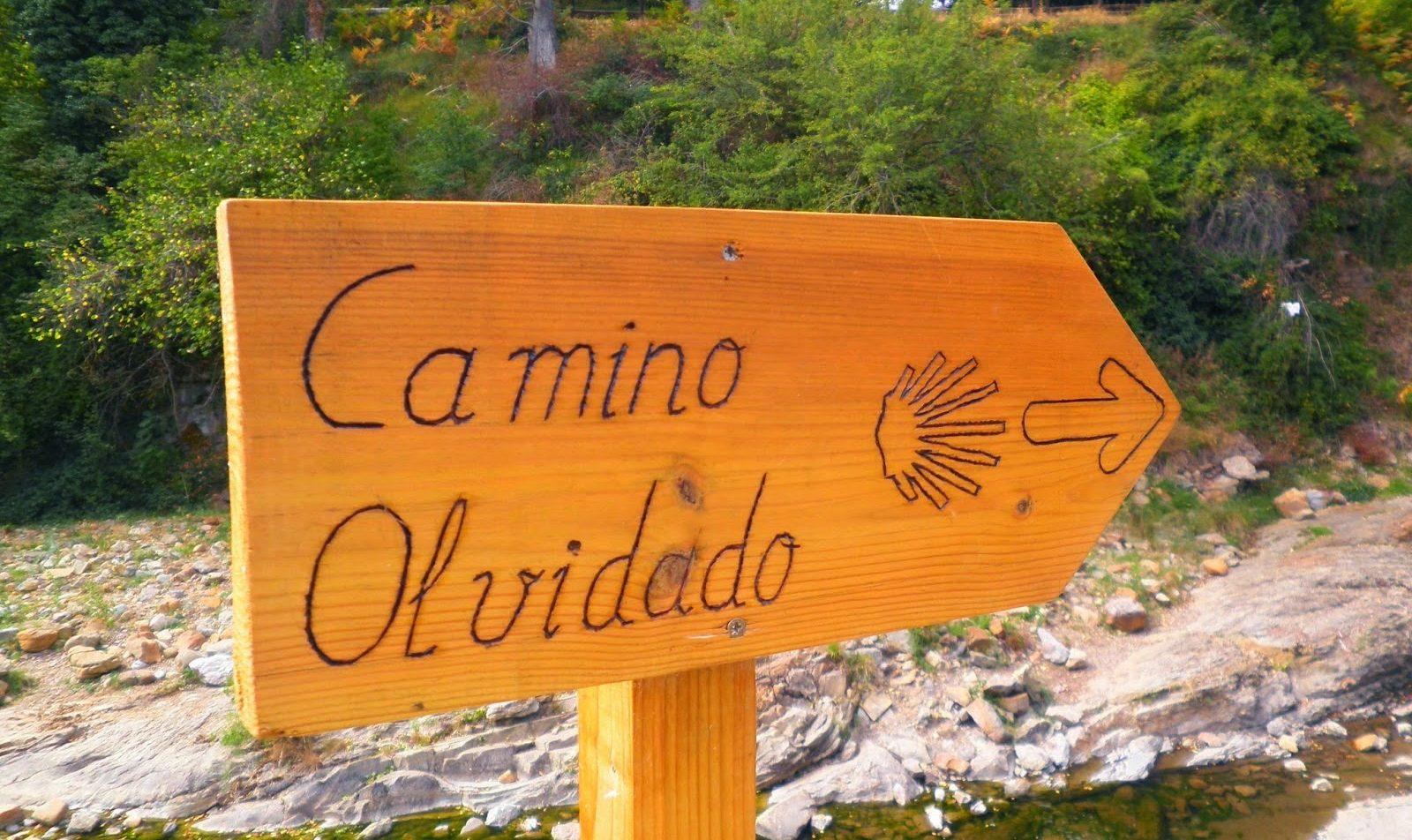 La Comisión de los Caminos a Santiago reconoce el Camino Olvidado y el Camino de Invierno como históricos así como el camino por Manzanal como nuevo Camino Tradicional 1