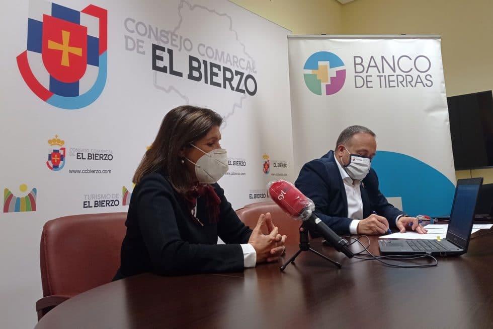 El Banco de Tierras del Consejo Comarcal de El Bierzo pone en marcha la campaña de  Recuperación de viñedos 1