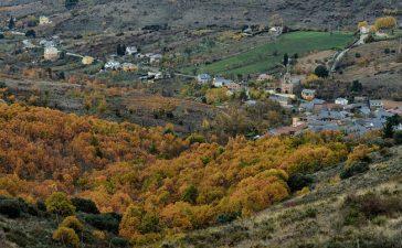 El proyecto terapéutico del soto de Villar de los Barrios en Traveler Spain 7