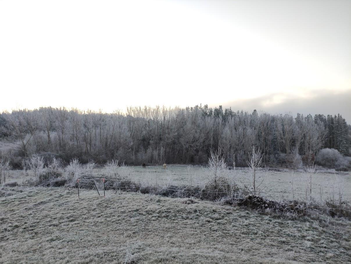Protección Civil declara la alerta por la previsión de nevadas en las próximas horas en la Comunidad 1