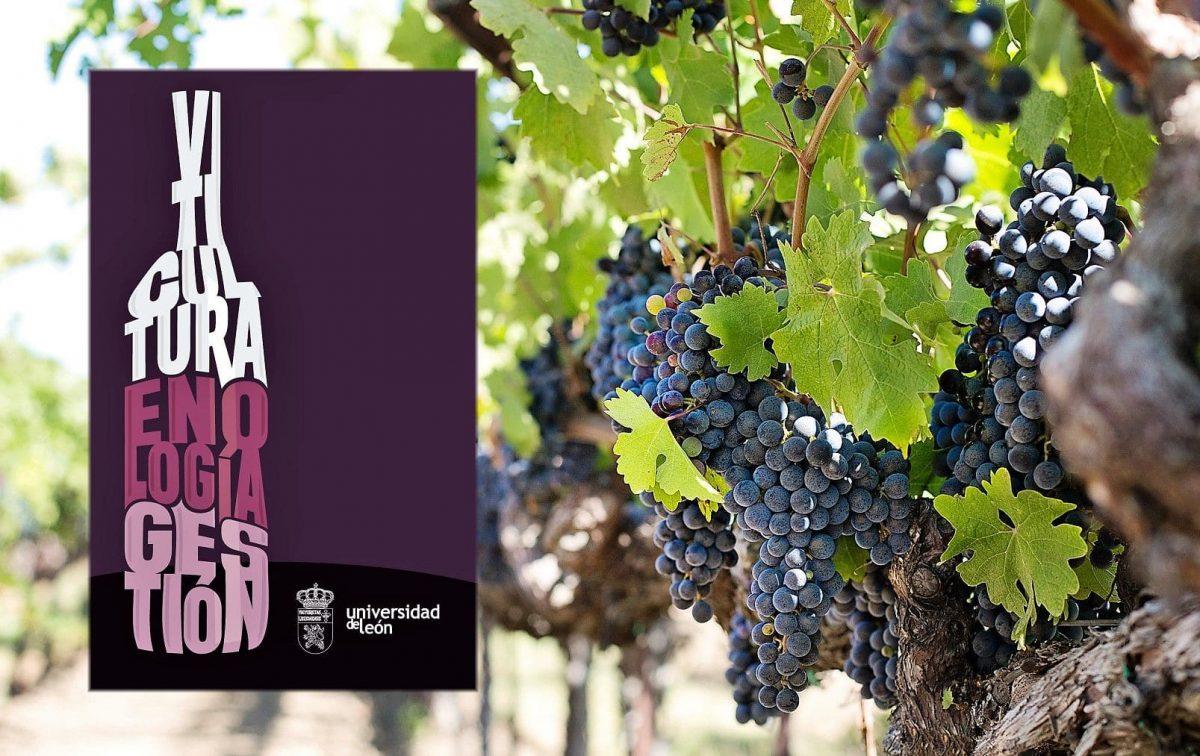 Comienza en Ponferrada la III edición del Máster en Viticultura y Enología de la ULE 1