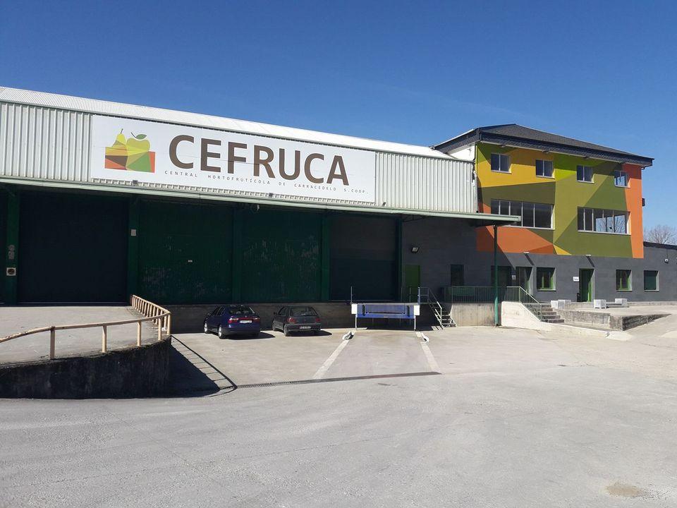 La Diputación aprueba ayudas por importe de 210.000 euros a 21 entidades agrarias de la provincia para la mejora de las producciones 1