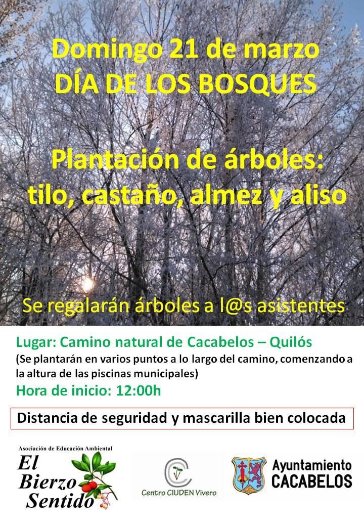 Cacabelos celebra el día de los bosques con una plantación comunitaria de árboles 2