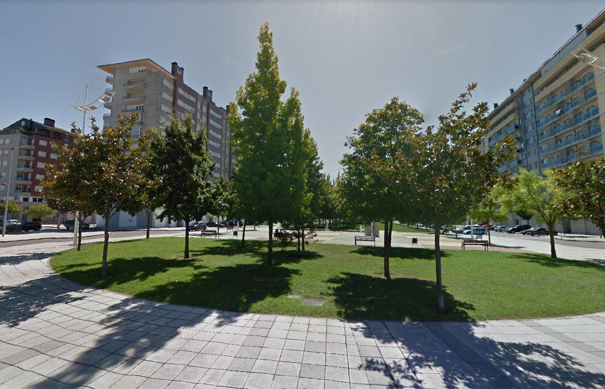A la sombra de los árboles monumentales y singulares de Ponferrada 10